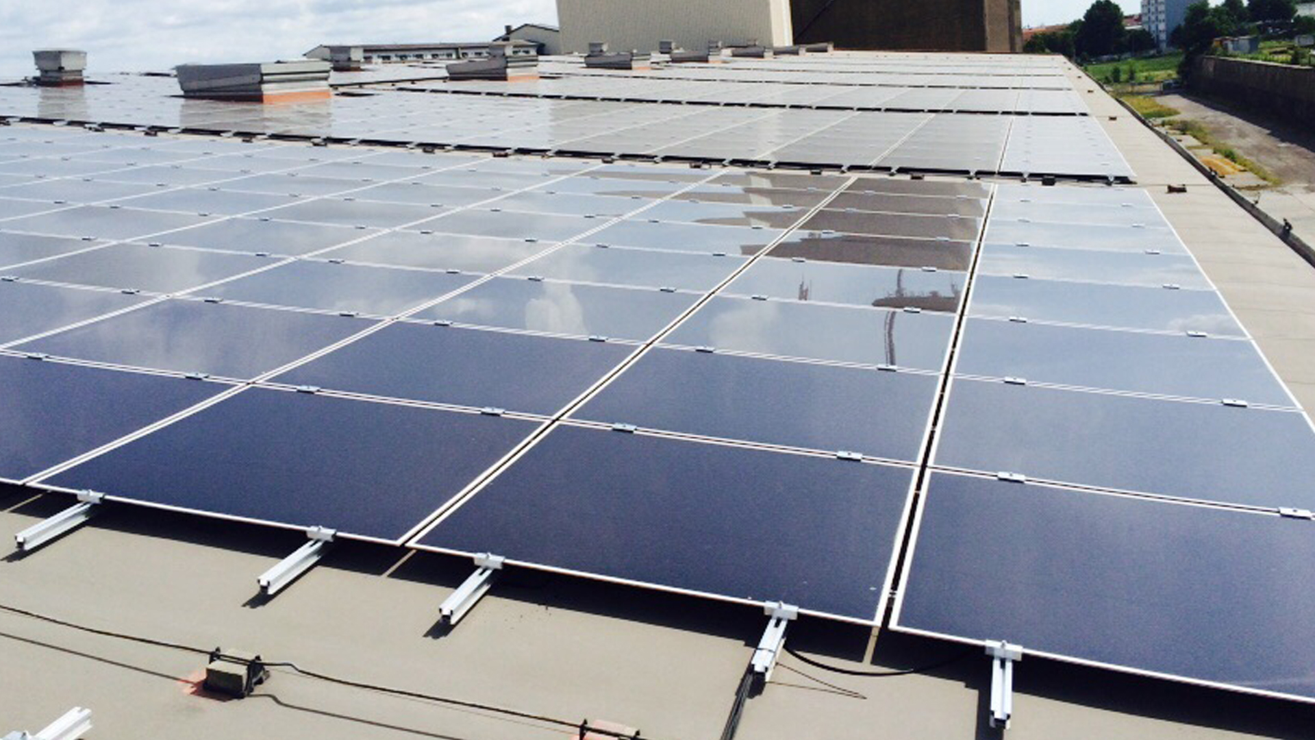 Vortex Energy Polska - Park solarny Riesa