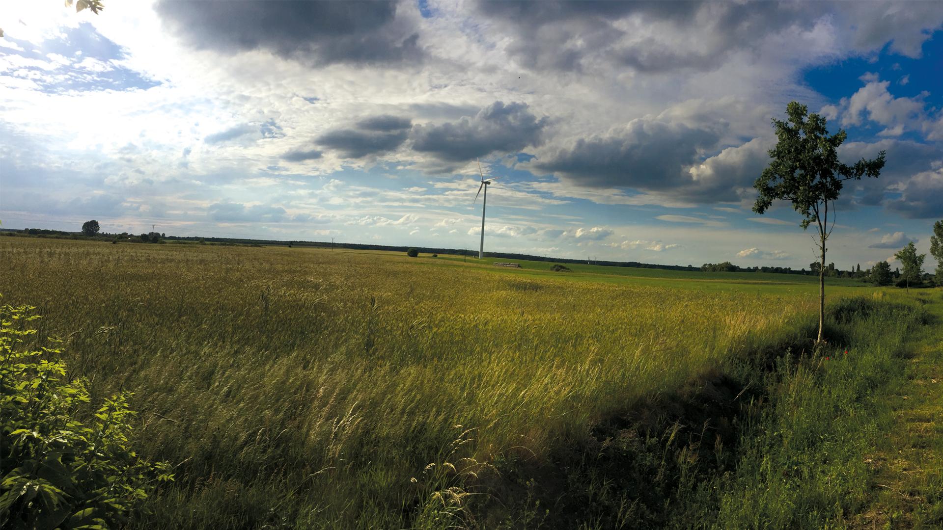 Vortex Energy Polska - Park wiatrowy Mogilno