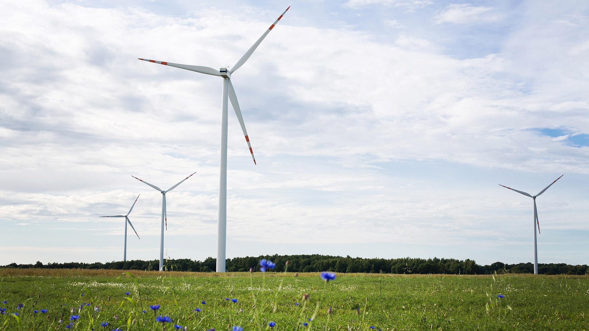 Vortex Energy Polska - Park wiatrowy Śniatowo